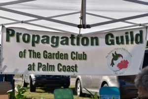 Plant Sale At The Farmers Market In Flagler Beach The Garden Club At Palm Coast